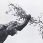 Volker Hildebrandt, Bambus, 2006, Acryl auf Leinwand, 150 x 200 cm