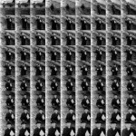 Volker Hildebrandt, Adenauer Hut, 2005, C-Print, 50 x 50 cm