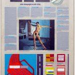 Volker Hildebrandt, Kunstzeitung Rheims, 1997-99,  Acryl auf Zeitung auf Leinwand,  47 x 33 cm